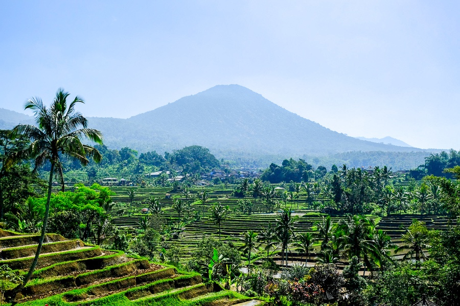 Jatiluwih rice terraces and mountains in Bali