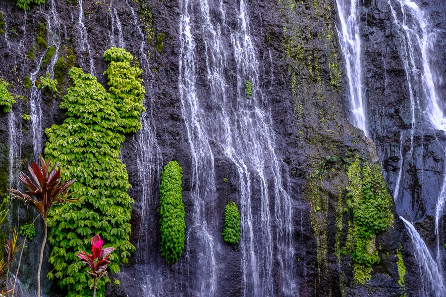 Water flowing down colorful foliage at the Banyumala Waterfall in Bali