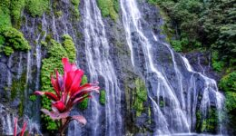 Banyumala Waterfall North Bali Banyumala Twin Waterfalls