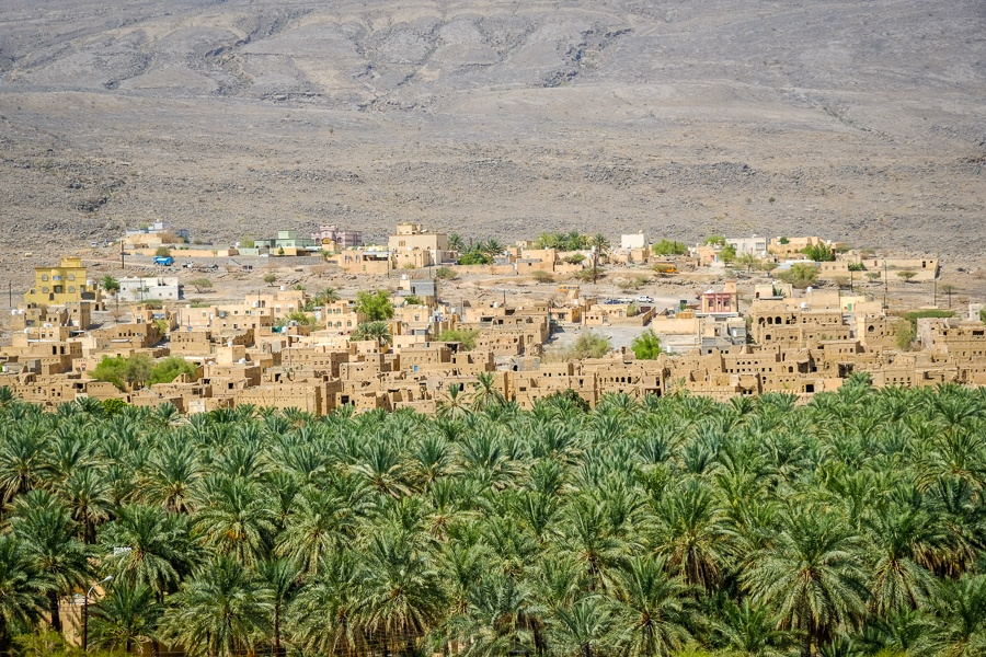 Desert town and palm trees in Oman