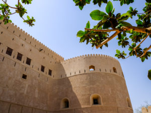 Looking through the trees at the walls of Al Hazm Castle in Oman