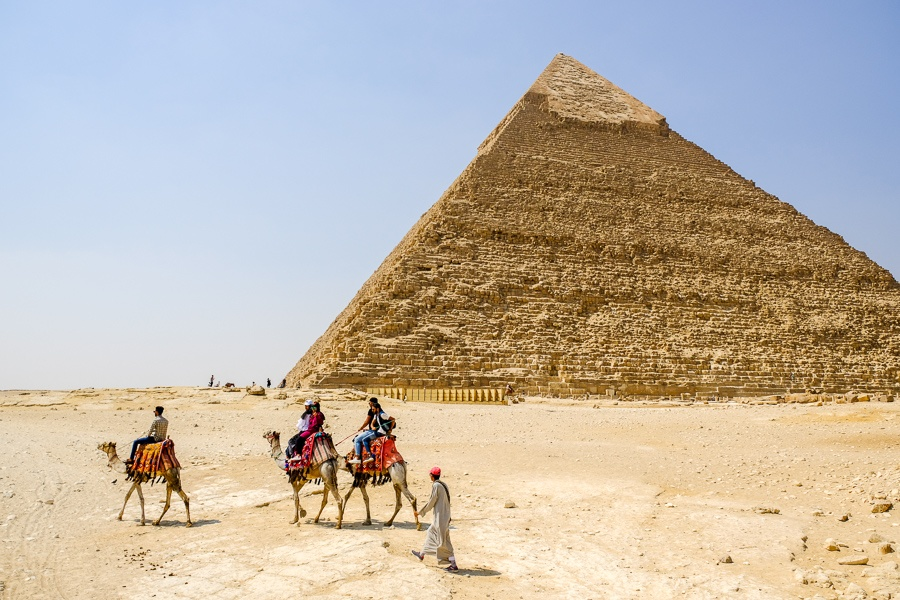 Camels walking past the Great Pyramids of Giza in Egypt