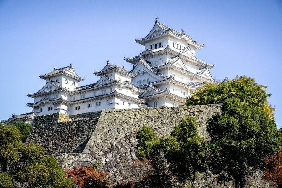 Main keep and trees at Himeji Castle in Japan