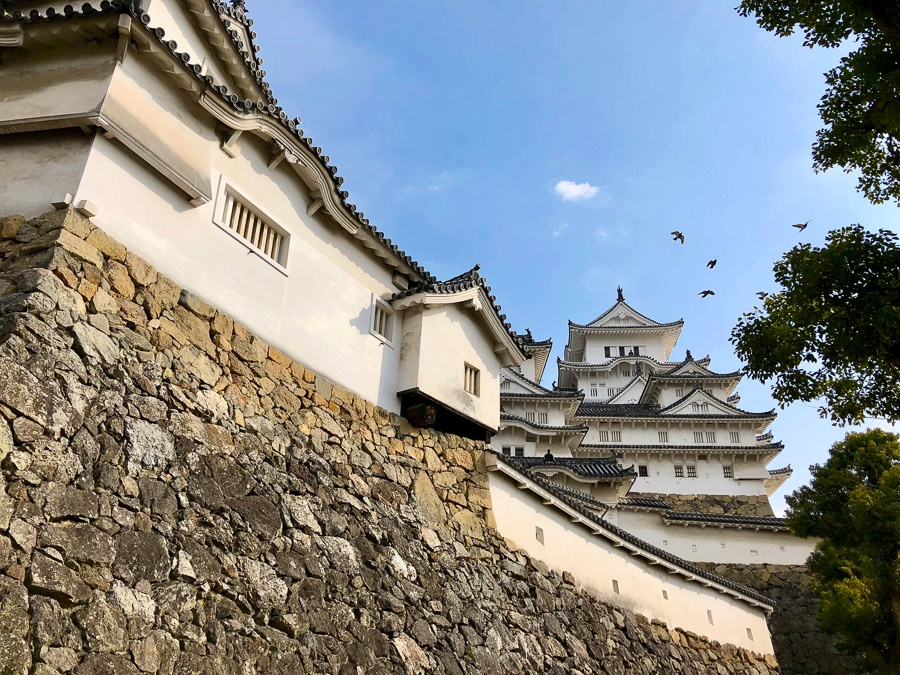 Birds flying above the steep walls at Himeji Castle in Japan