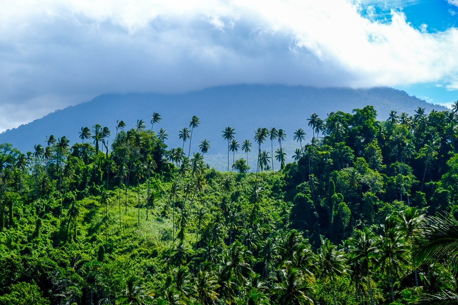 Jungle and volcano in the clouds on the way to Tangkoko Nature Reserve in Sulawesi, Indonesia