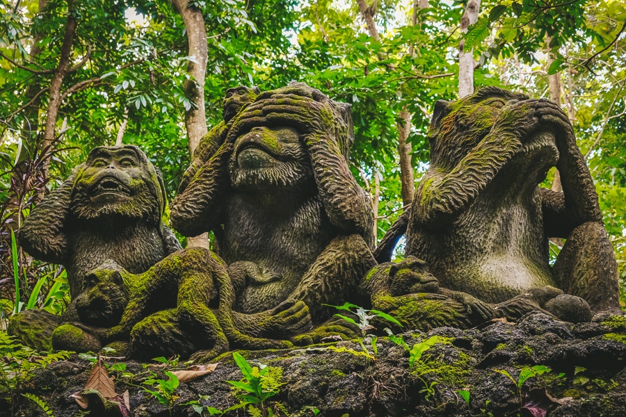 See no evil monkey statues at the Ubud Monkey Forest in Bali