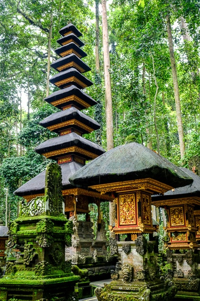Sangeh Monkey Forest temple in Bali