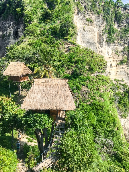 The treehouses at Nusa Penida