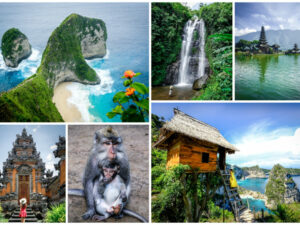 Collage of Bali tourism activities