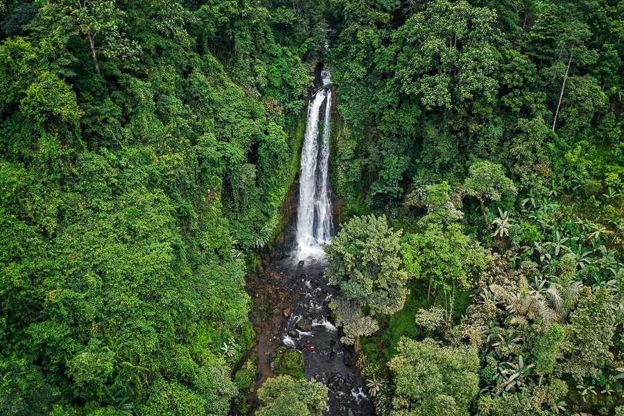 Drone view of GitGit Waterfall in Bali