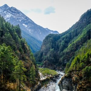 River and forest on the EBC Trek in Nepal