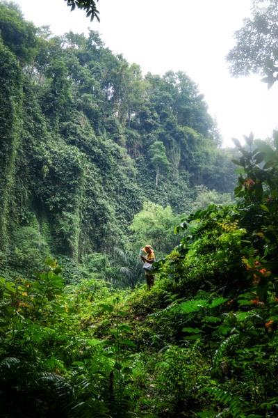 Santhipala Waterfall Bali Jungle