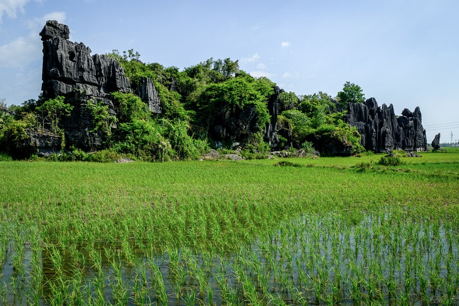 Stone forest in Maros