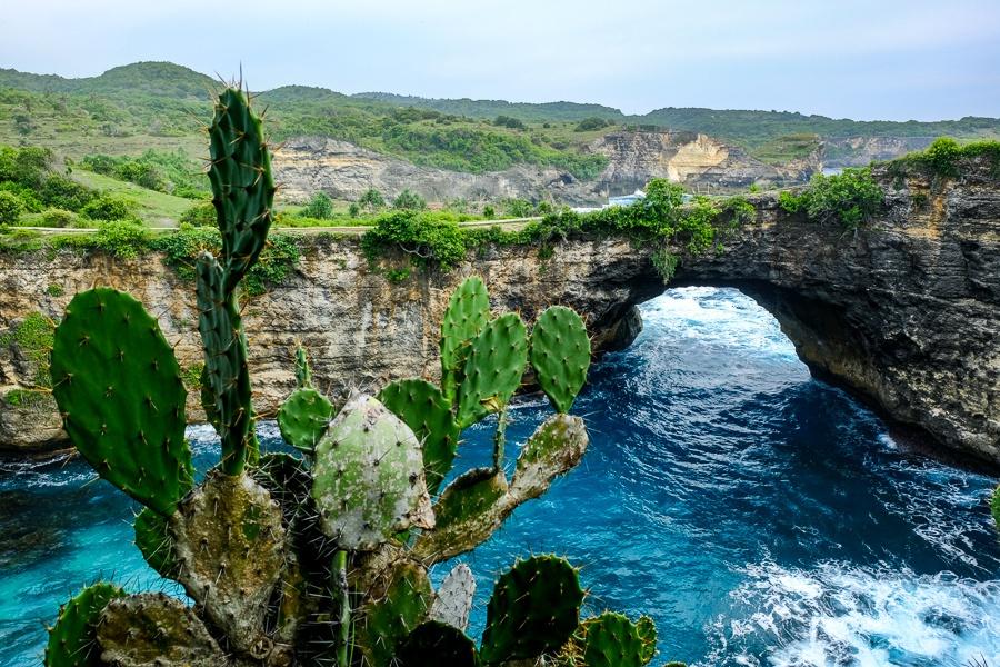Cactuses and rock arch at Broken Beach in Nusa Penida, Bali