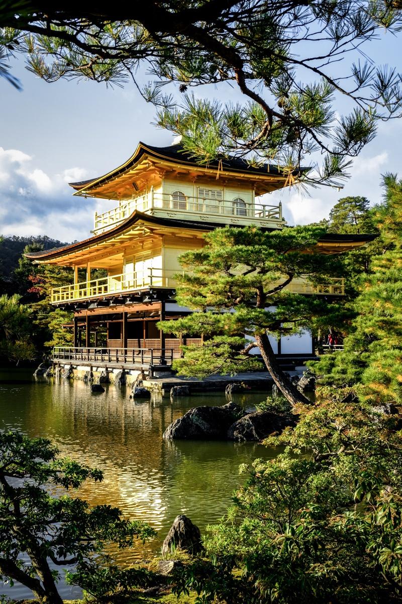Japan Av Picture