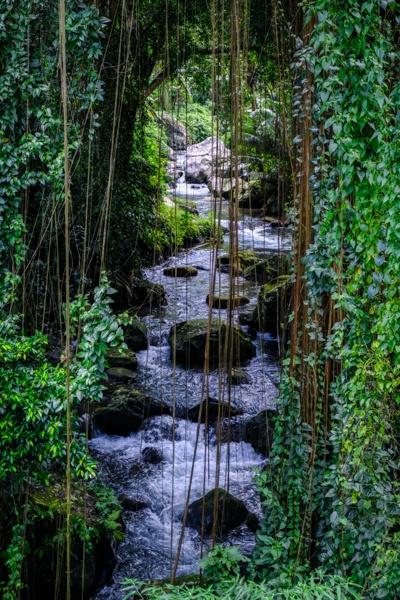 Pakerisan River in Bali