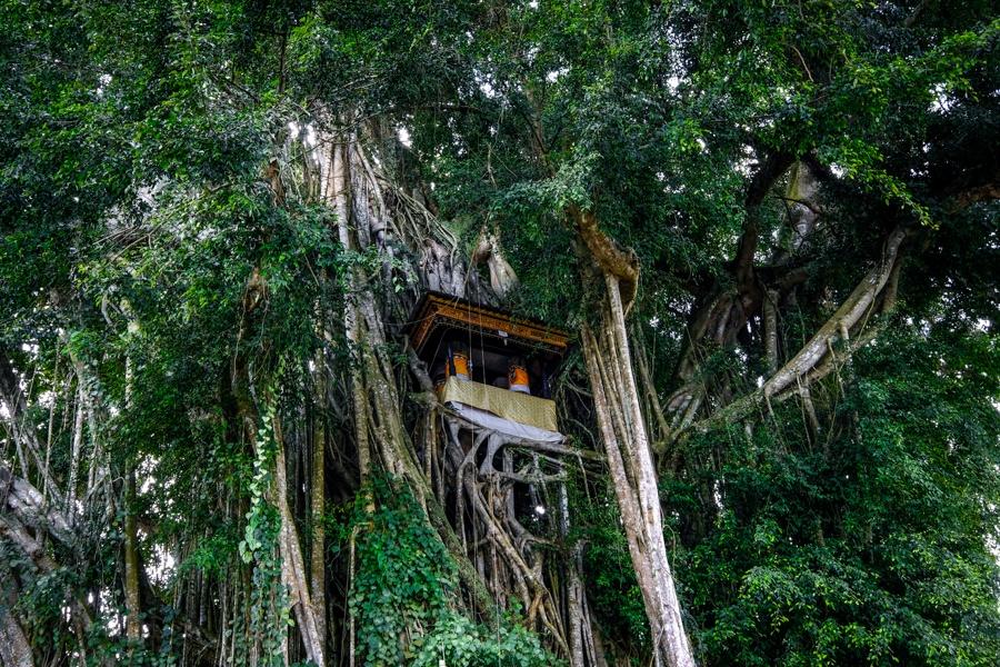 Pura Kehen banyan tree house