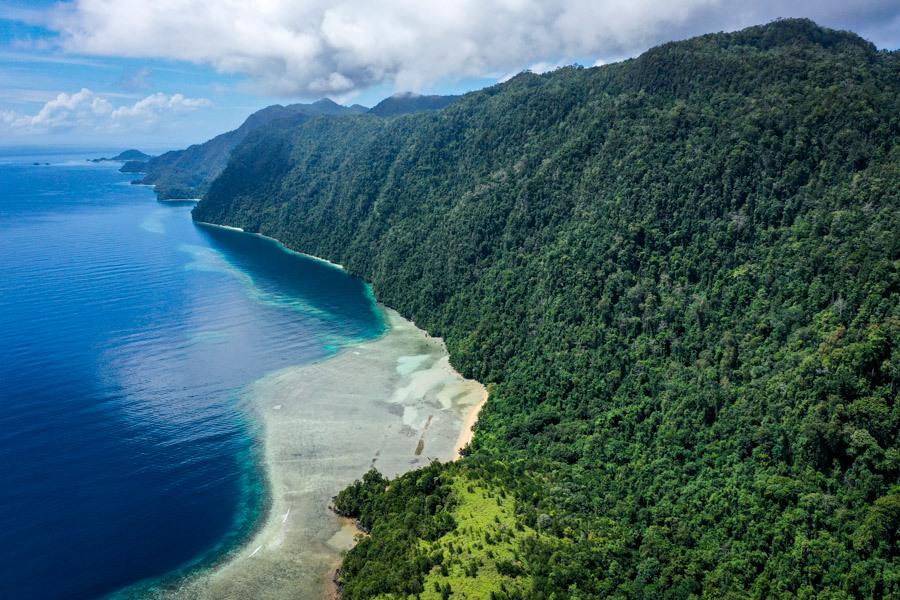 Pulau Labengki coastline