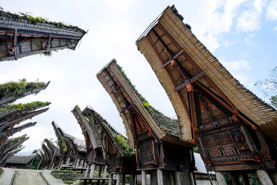 Tongkonan houses at Palawa