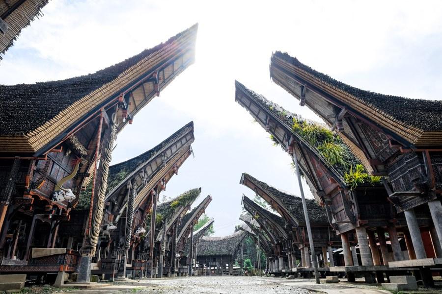 Tongkonan houses at Palawa in Tana Toraja Indonesia