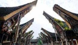 Tana Toraja Indonesia Tongkonan houses in Palawa