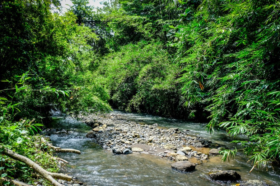 Tukad Pakerisan River in Bali