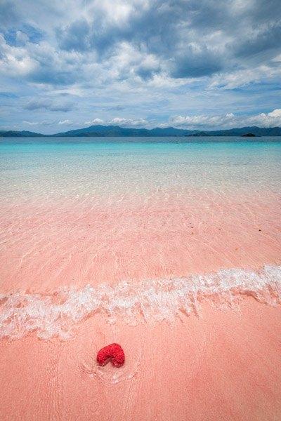Pink Beach Komodo Island Indonesia Labuan Bajo Flores