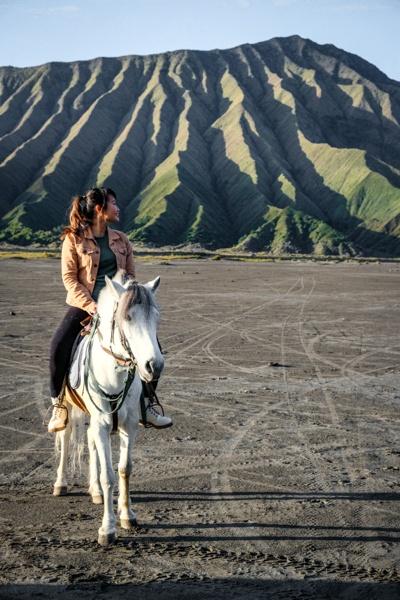 Bromo Horseback Riding