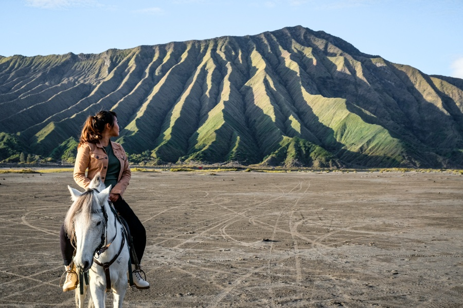 Mount Bromo Horseback Riding