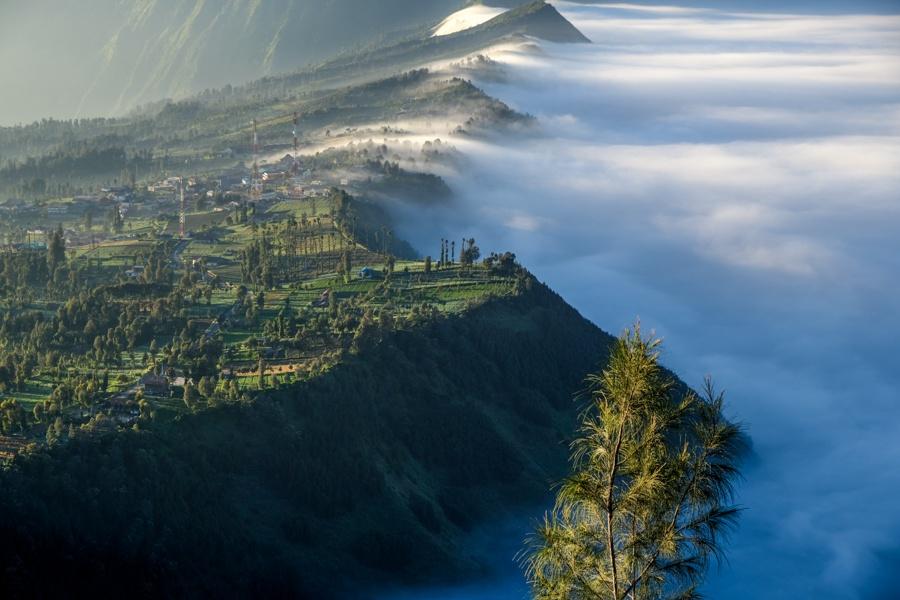 Cemoro Lawang Fog