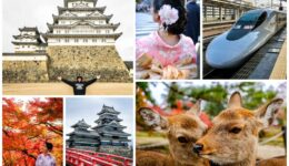 Best Things To Do In Japan What To Do For Fun In Japan